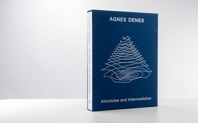 Agnes Denes - Absolutes and Intermediates