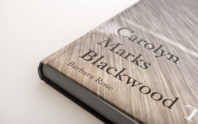 Carolyn Marks Blackwood - The Story Series